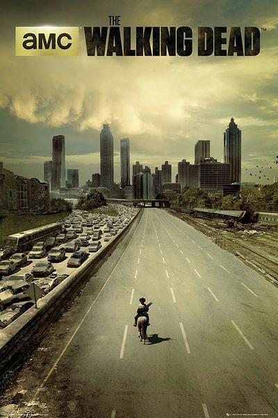 Walking Dead City Poster