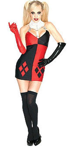 Secret Wishes Harley Quinn Costume